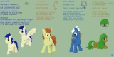 A number of pony OCs - thumbnail