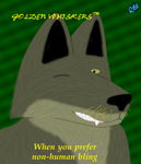 Golden whiskers - thumbnail